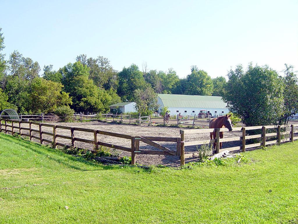 Boarding Dunelm Farm